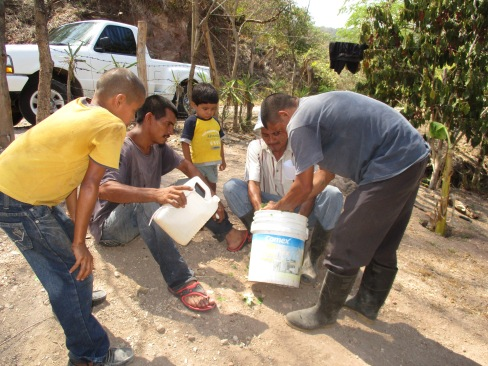 farmers-in-el-puente-learning-to-prepare-an-organic-pesticide-to-save-their-corn-and-bean-crops