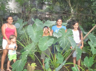 _the-family-of-angel-amaya-with-malanga-a-traditional-vegetablein-their-kitchen-garden